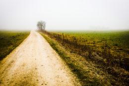 Казка про Щастя і Нещастя